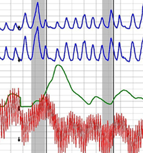 Polygraph test Los Angeles under $200